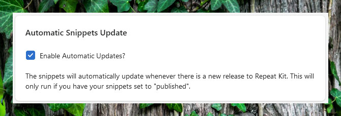 Automatic Snippet Updater